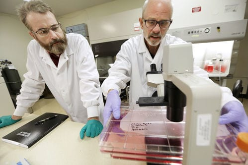 Researchers at FluGen - PHOTO BY AMBER ARNOLD, STATE JOURNAL ARCHIVES