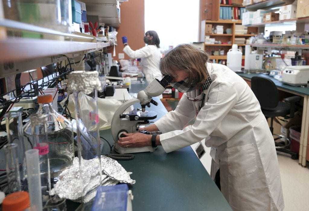 UW Madison cancer research lab (Photo - Steve Apps, State Journal)