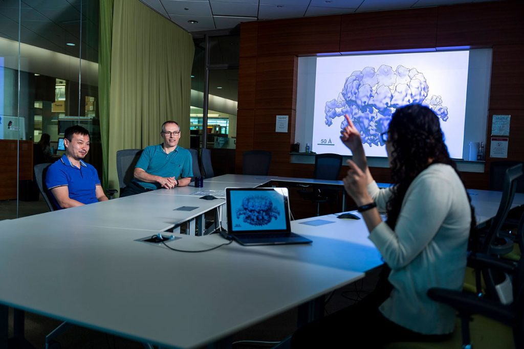 """Members of the Ahlquist Lab discuss a cryo-EM image of the """"viral crown"""" RNA replication complex responsible for genome replication in viruses like SARS-CoV-2."""