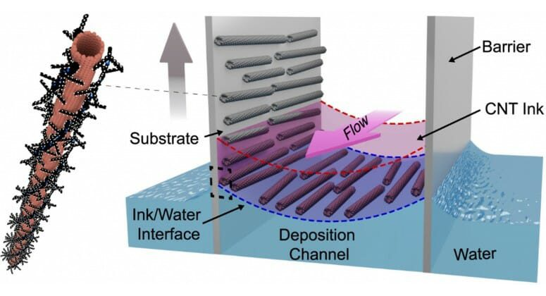 """UW–Madison engineers have worked out a method to make orderly sheets of 2-dimensional carbon nanotubes by aligning them between layers of water and a solvent """"ink."""" COURTESY OF ARNOLD LAB"""