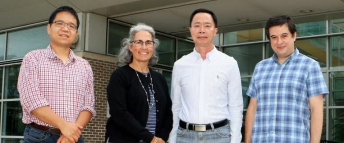 Waisman Center researchers Daifeng Wang, Anita Bhattacharyya, Su-Chun Zhang and André Sousa are leading a new effort funded by an $11 million grant from the NIH to develop a model for brain development in Down syndrome that relies on stem cells. COURTESY OF THE WAISMAN CENTER